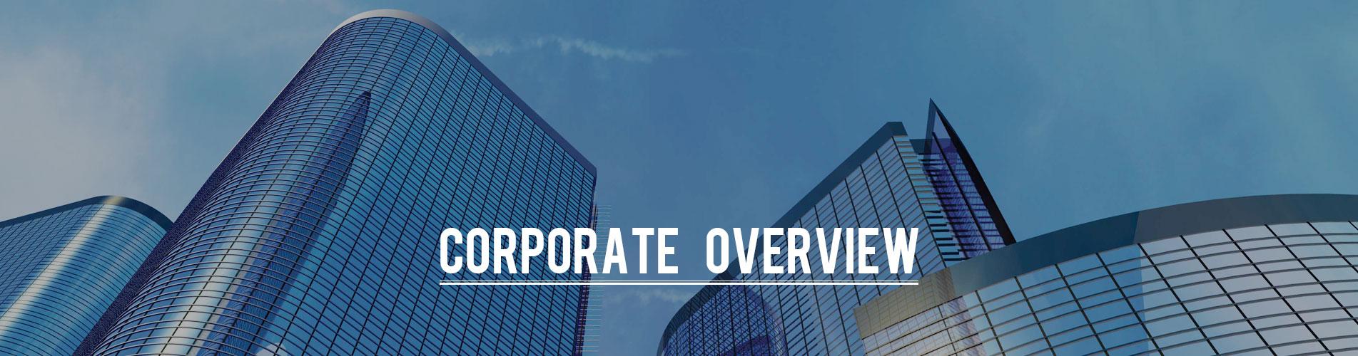 company profile 3